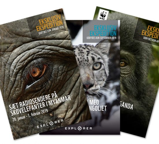 WWF kampagne